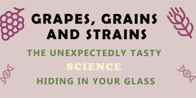 Grapes, grains and strains.png